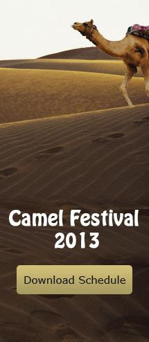 Camel Festival 2013